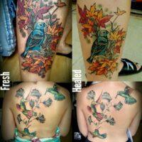 Living Gallery Skin Modification & Tattoo Studio